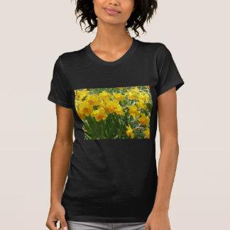 daffodile yellow t-shirts