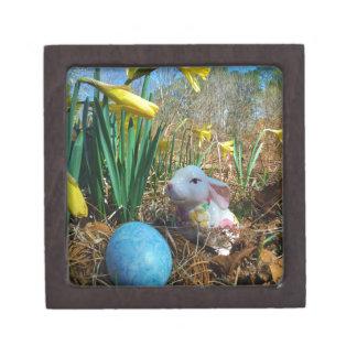Daffodils and  Blue Easter egg Premium Gift Box