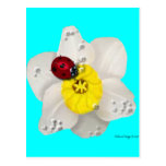 Daffodils and Ladybugs Post Cards