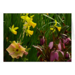 Daffodils and Lenten Roses II Colorful Floral Card