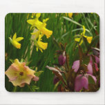 Daffodils and Lenten Roses II Colorful Floral Mouse Pad