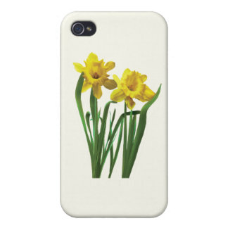 Daffodils At Attention iPhone 4 Cover