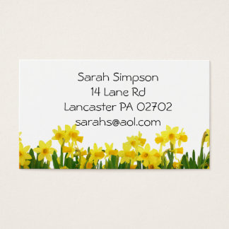 daffodils flower  business cards