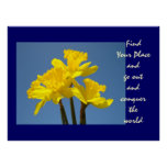 Daffodils Flowers Find Your Place Conquer World Posters
