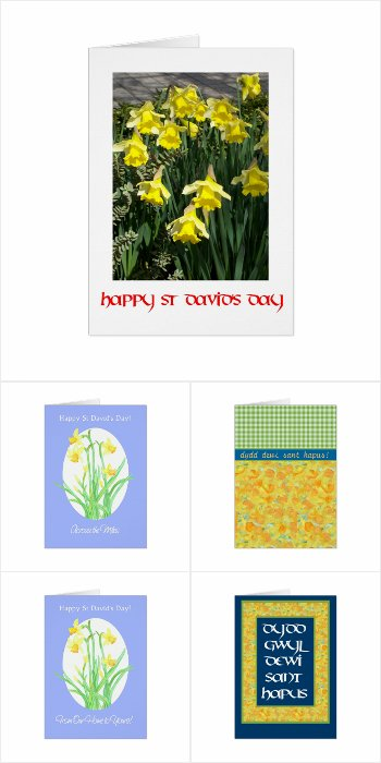 Daffodils for St David's Day