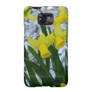 Daffodils Growing Samsung Galaxy S2 Case