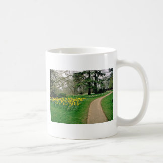 Daffodils in Magdalen's extensive gardens  flowers Classic White Coffee Mug