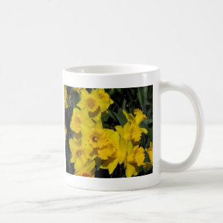 daffodils in spring time 2 mugs