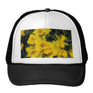 daffodils in spring time 2 trucker hat
