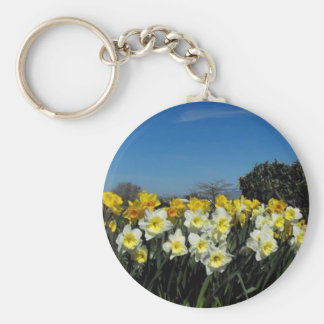 daffodils in spring time basic round button keychain
