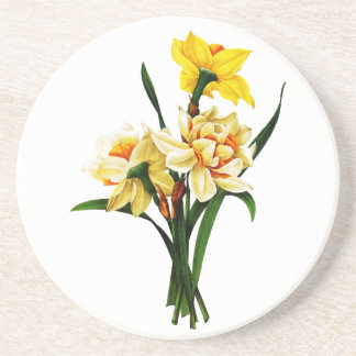 Daffodils or Narcissus By Pierre Joseph Redoute Drink Coaster