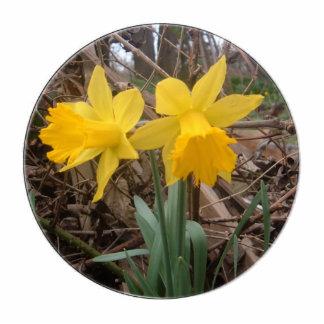 Daffodils Photo Sculpture Ornament
