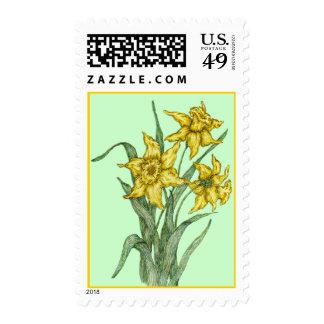 daffodils postage
