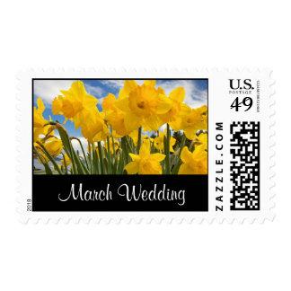 daffodils postage stamp