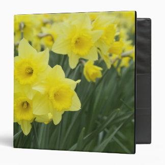Daffodils RF) Binder