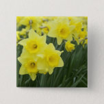 Daffodils RF) Button