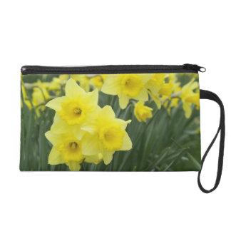 Daffodils RF) Wristlet Purse