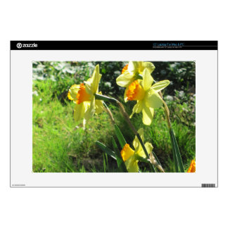 """Daffodils 15"""" Laptop Decals"""
