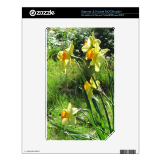 Daffodils Decals For NOOK Color