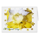 Daffodils St Davids Day Greeting Card