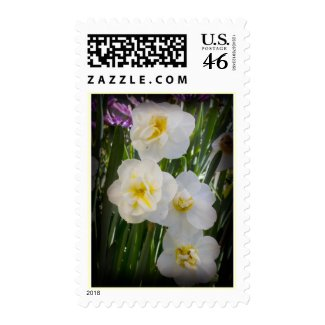 Daffodils Stamp