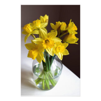 Daffodils Stationery