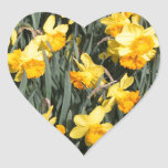 Daffodils Stickers