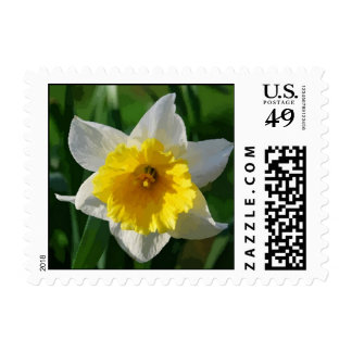 Daffodils Symbolize Renewal and Hope Postage