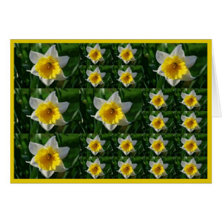 Daffodils Tic Tac Toe Greeting Card for Cancer Pat