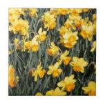 Daffodils Tiles