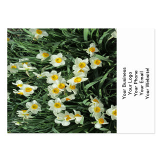 Daffodils Yellow White Business Cards