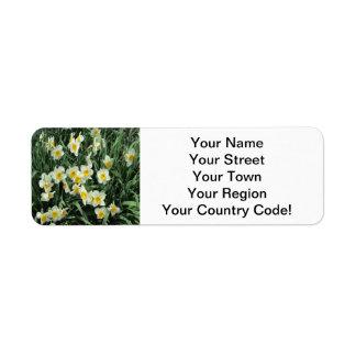 Daffodils Yellow White Label