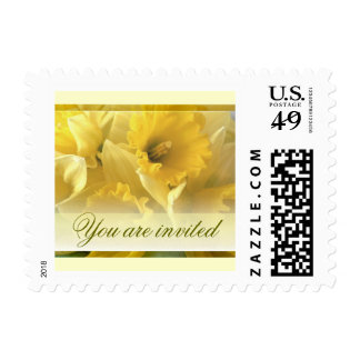 daffodils you are invited postage