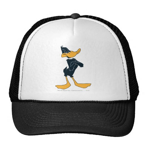 Daffy Duck with Arms Crossed Hat