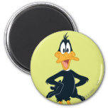Daffy the Duck Magnet