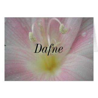 Dafne Card
