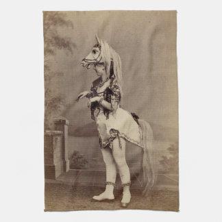 Daguerreotype/foto del traje del caballo del Victo Toallas De Cocina
