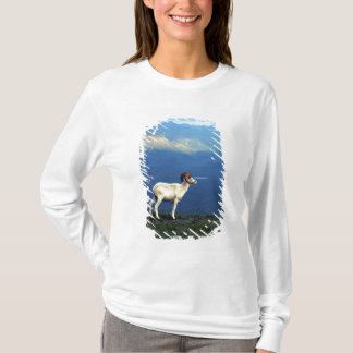 Dahl ram standing on grassy ridge, mountains T-Shirt