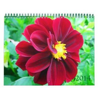 Dahlia 2014 Calendar