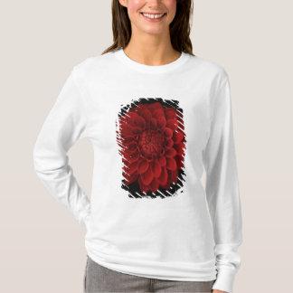 Dahlia 4 T-Shirt