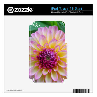 Dahlia Beauty Skin For iPod Touch 4G