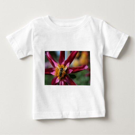 Dahlia & Bee T Shirts