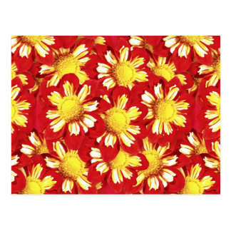 Dahlia bouquet - red and white with yellow postcard