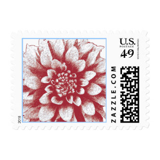 Dahlia Burst Postage Stamp