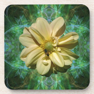 Dahlia flower and meaning drink coaster