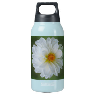 Dahlia flower and meaning insulated water bottle