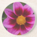 Dahlia Flower Beverage Coaster