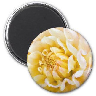 Dahlia Flower Fridge Magnets
