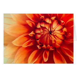 Dahlia Flower Note Card