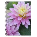 Dahlia Flowers Notebook